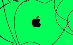 Apple một lần nữa chứng minh Tim Cook đã đúng, khi không còn phụ thuộc vào iPhone nữa