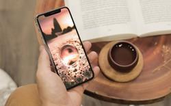 Hãy trao cho Di Động Việt iPhone cũ để nhận lại iPhone 7 Plus, 8 Plus, X, Xs Max sang hơn
