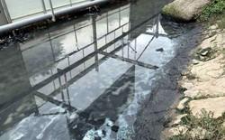 Sông Tô Lịch nước trong, nhìn rõ đáy bùn đang phân hủy nhờ công nghệ Nhật