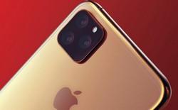 Digitmes: Đến Apple cũng thấp thỏm lo âu về doanh số iPhone 2019 do máy không có nhiều điểm đột phá