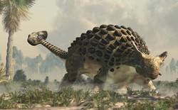 """""""Xác ướp"""" khủng long được bảo quản nguyên vẹn hơn 100 triệu năm có trọng lượng gần như tương tự lúc còn sống"""