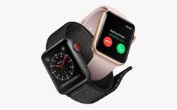 Mảng kinh doanh thiết bị đeo của Apple sẽ vượt doanh thu của máy Mac và iPad vào cuối năm 2020