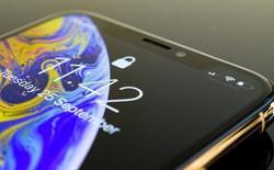 Màn hình OLED của iPhone 11 sẽ giống hệt Galaxy Note 10