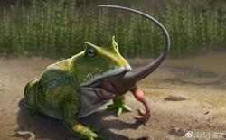 Beelzebufo - Loài ếch quỷ khổng lồ có thể nuốt chửng cả khủng long