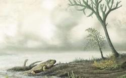 Khoa học đang nghiên cứu lịch sử kháng kháng sinh của vi khuẩn trong hàng triệu năm, trước cả khi khủng long xuất hiện