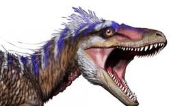 Bất ngờ phát hiện tổ tiên của khủng long bạo chúa chỉ có kích thước nhỉnh hơn một con chó