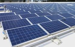Apple đang phát triển tấm lợp năng lượng mặt trời cho một nhà máy sản xuất nước tương ở Đài Loan