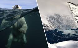 Hơn 12 tỷ tấn băng bị tan chảy ở Greenland chỉ trong một ngày