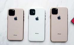 """Nhờ con chip phụ này, iPhone 11 như """"hổ mọc thêm cánh"""", sở hữu tính năng chưa từng có trước đây"""