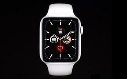 Apple công bố Apple Watch Series 5: Màn hình always-on, thêm la bàn, lựa chọn vỏ ngoài bằng titan, giá 399 USD