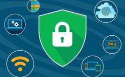 Ra mắt nền tảng tiền thưởng bảo mật Vietnam Bug Bounty, hacker mũ trắng Việt Nam có sân chơi mới