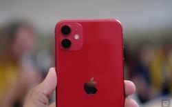 Cận cảnh iPhone 11: Chiếc iPhone flagship giá rẻ nhất của Apple