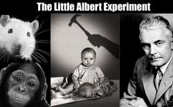 """""""Albert bé nhỏ"""" - một trong những thí nghiệm khủng khiếp nhất trong lịch sử"""