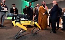 Chó robot của Boston Dynamics đã mở bán: Vác đồ nặng 14 kg, tốc độ chạy 1,6m/s, tự đứng dậy nếu bị ngã, giá bán ngang xe hơi mới