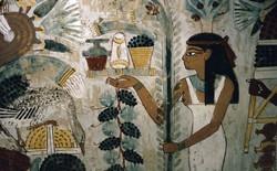 Các nhà khảo cổ phát hiện 3.000 năm trước con người đã sở hữu vật liệu chống ăn mòn