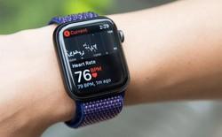 Apple Watch sắp có thêm tính năng theo dõi chất lượng giấc ngủ của người dùng?