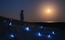 Khi bạn thích làm phi hành gia nhưng theo nghiệp làm đèn thì sẽ tạo ra tác phẩm như vườn cổ tích thế này
