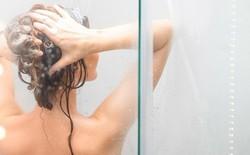 Gội đầu hàng ngày và 3 ngày/lần có khác biệt lớn: Nhiều người chưa biết khiến tóc mất dần