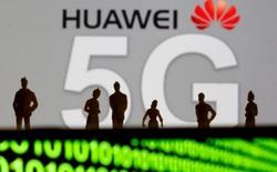 Mỹ sắp có đạo luật cứng rắn: Cấm chia sẻ thông tin tình báo với các quốc gia dùng mạng 5G của Huawei