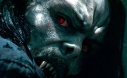 """Mời bạn xem trailer Morbius: Tiến sĩ Ma cà rồng trong vũ trụ """"anti Spider-Man"""" chính thức lên màn ảnh lớn"""