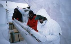 Các nhà khoa học tìm thấy 28 loài virus chưa từng được biết tới trong mẫu băng có từ Kỷ băng hà