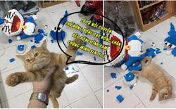 Thanh niên hì hục cả tuần lắp mô hình 4.500 miếng Lego hình Doraemon, chưa kịp giao khách thì bị mèo phá tan tành trong 1 nốt nhạc