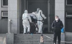 Các nhà khoa học Hong Kong tuyên bố đã chế được vắc xin cho virus corona Vũ Hán