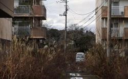 8 năm sau đại thảm họa, Nhật Bản mang tham vọng biến Fukushima thành trung tâm về năng lượng tái tạo