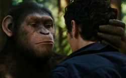 """Liệu AI có thể trở thành """"phiên dịch viên"""" và giúp con người giao tiếp được với các loài động vật?"""