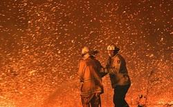 """Cháy rừng ở Australia: Mưa lớn đã xuất hiện, trở thành """"vị cứu tinh"""" cho lính cứu hoả!"""
