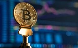 Bitcoin tăng vọt lên sát 16.000 USD, cách đỉnh cao nhất lịch sử không còn xa