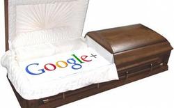 Điểm danh những trang tìm kiếm hạ gục Google