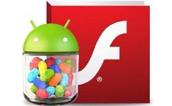 Hướng dẫn cài đặt Flash Player trên Android 4.1/4.2 Jelly Bean