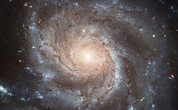 Những gì tồn tại trước vụ nổ Big Bang ?