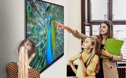 Màn hình tương tác LG TR3BF: Chiếc bảng công nghệ có khả năng viết và xoá bằng tay