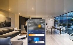 So sánh đèn thông minh sóng Zigbee, Wifi, Bluetooth mesh: mạng không dây nào mang lại trải nghiệm tốt hơn?