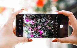 Tận dụng tối đa khả năng zoom phi thường của Galaxy S21 Ultra, bạn sẽ có những tác phẩm đáng nhớ