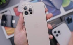 iPhone 12, 12 Pro Max và Xs Max cũ giảm giá mạnh, khách mua tăng đột biến