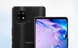 Sharp AQUOS zero6 ra mắt: Smartphone 5G có màn hình lớn và pin khủng nhẹ nhất thế giới