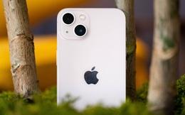 DxOMark: iPhone 13 mini chụp ảnh đẹp hơn iPhone 12 Pro