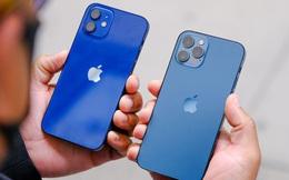 Cận ngày iPhone 13 chính hãng về Việt Nam, giá iPhone 12 đang giảm sâu!