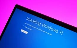 Lỗi Windows Update chặn một số PC tương thích khỏi việc tải xuống Windows 11