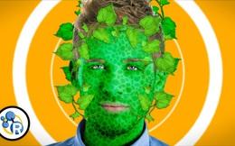 Tại sao con người không có da xanh để quang hợp như cây cối?