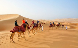 Tại sao các nước Ả Rập có vô số sa mạc nhưng vẫn nhập khẩu cát? Có phải vì… sính ngoại không?