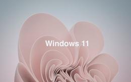 """Không chỉ Windows 11, Microsoft chuẩn bị ra mắt cả Windows 11 """"SE"""""""