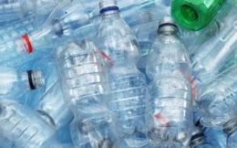 Dùng khuẩn E. coli, các nhà khoa học tái chế chai nhựa thành vani làm kem