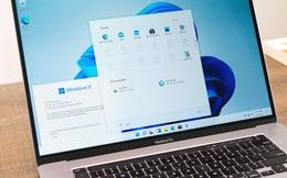 6 câu trả lời cho bạn biết đã nên cài Windows 11 Insider Preview để dùng hàng ngày hay chưa!