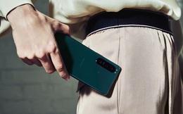 Xperia 1 III ra mắt tại Việt Nam nhưng chưa có giá, Xperia 10 III 5G giá 11.99 triệu, tặng quà 2.99 triệu