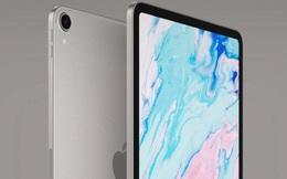 Thế hệ iPad mới sẽ có một phiên bản màn hình lớn hơn 12.9 inch