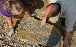 Xem Google Earth, cặp vợ chồng phát hiện ra hàng trăm sinh vật kỳ quái thuộc kỷ Jura